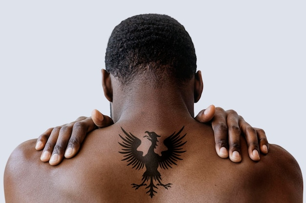 屈曲した背中の筋肉の背面図