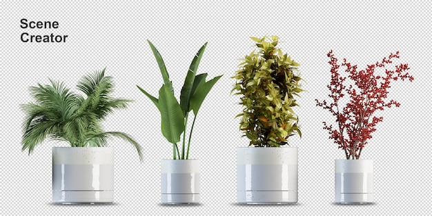Render of isolated plant. isometric front view. transparent wall