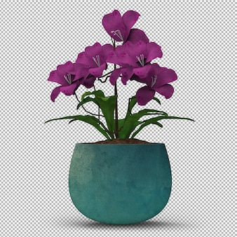 Render of isolated plant.