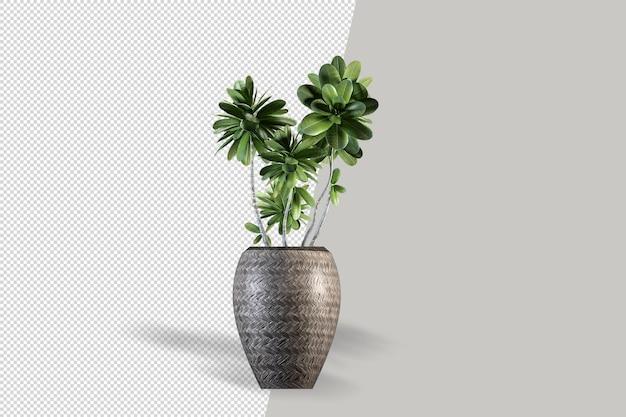 鉢植えの孤立した植物のレンダリング