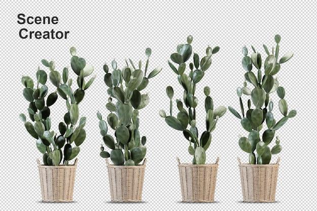 Визуализация изолированного растения изометрической вид спереди прозрачной стены