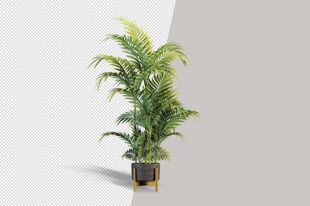 격리 된 식물 아이소 메트릭 전면보기 투명 벽의 렌더링