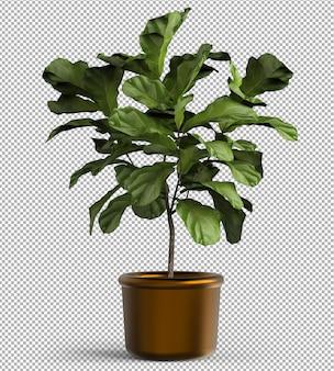 孤立した植物のレンダリング。メタルポット。等尺性のフロントビュー。透明な背景。プレミアム3d。