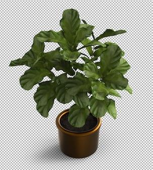 孤立した植物のレンダリング。メタルポット。等角投影図。透明な背景。プレミアム3d。