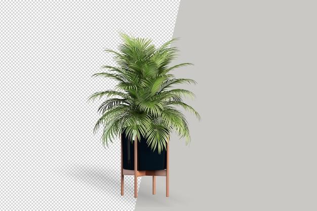고립 된 식물의 렌더링