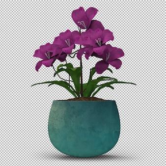 Визуализация изолированного растения.