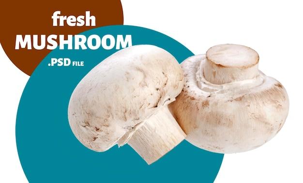 Спелые шампиньоны грибы изолированные