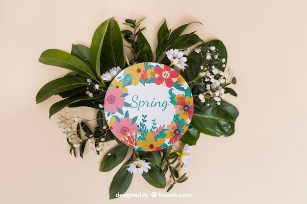 Round spring mockup
