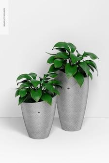 植物のモックアップと丸い背の高いセメントポット
