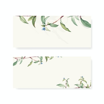 Set of botanical background designs