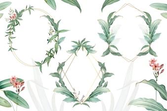 緑の葉のデザインと空のフレームのセット