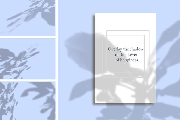 幸福の花の影(トウワタ)。モックアップやその他のデザインに適用するための野菜の影のセット。自然光が外来植物から影を落とします。フラット横たわっていた、トップビュー