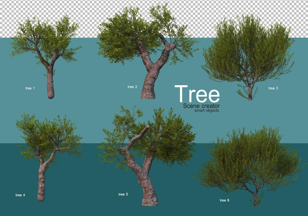 Show the results of a variety of tree arrangements