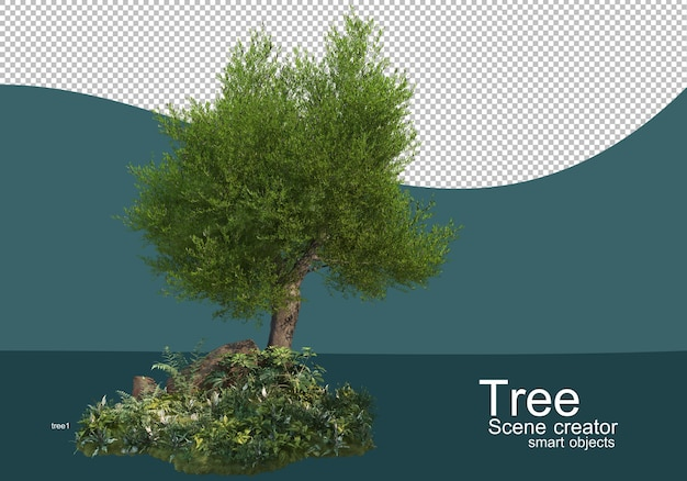 나무 및 관목 배열에 대한 결과 표시