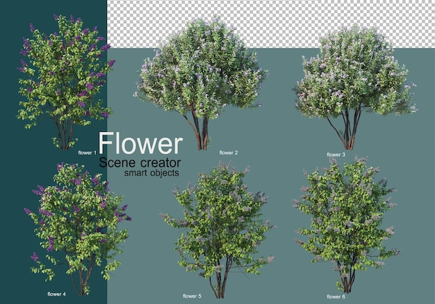 다양한 종류의 꽃에 관목 배열