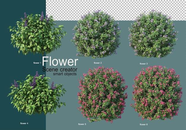 Shrub arrangement in many types of flowers