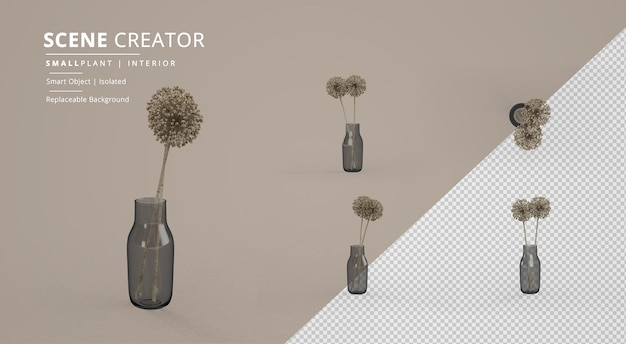 병 장면 창조자에있는 작은 실내 식물