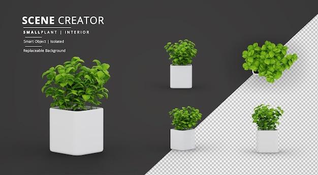 Cube pot scene creator의 작은 실내 식물