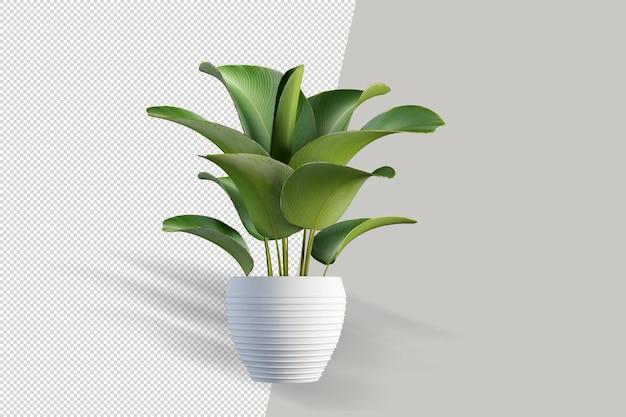 キューブポットシーンクリエーターの小さなインテリア植物