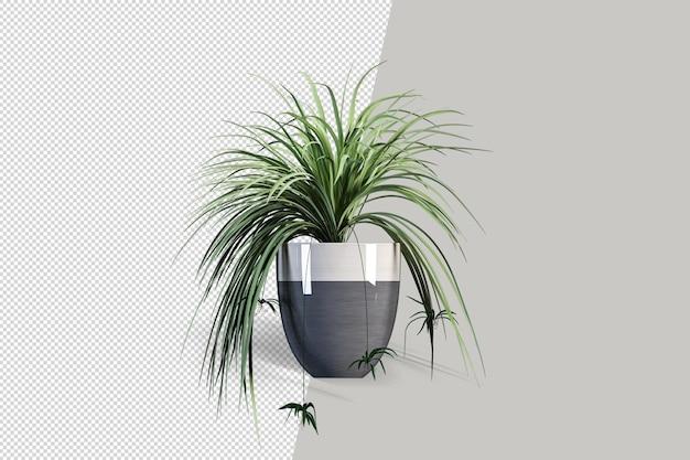 큐브 냄비 장면 제작자의 작은 실내 식물