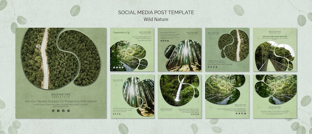 Social media post template with wild nature
