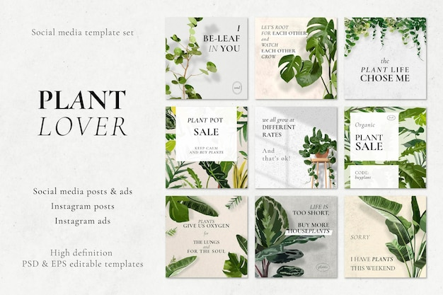 소셜 미디어 템플릿 psd 세트, 식물 애호가 광고