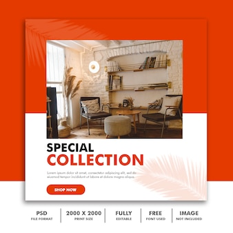 Special collection social media post template