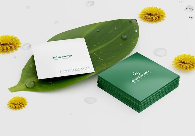 잎에 정사각형 명함 모형
