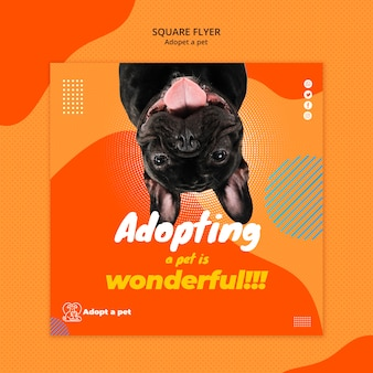 대피소에서 애완 동물 입양을위한 사각형 전단지 템플릿