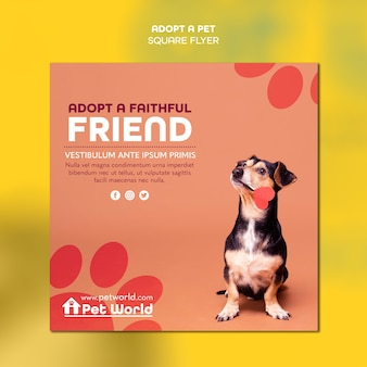 Squared flyer for pet adoption with dog