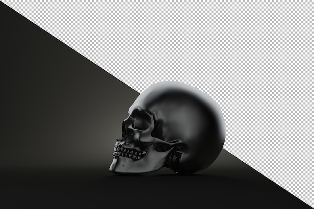 검은 배경에 정 인간의 두개골