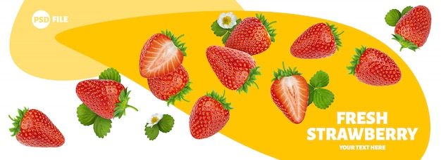 Strawberry isolated on white banner