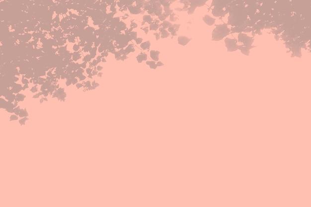 Летний фон дерева теней на розовой стене.