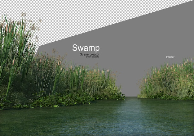 A swamp with a variety of trees