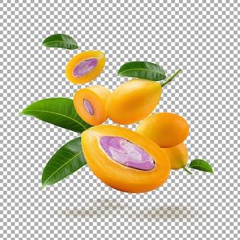 Sweet marian plum fruit isolated
