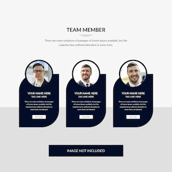 Team member web template