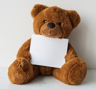 Teddy holding paper