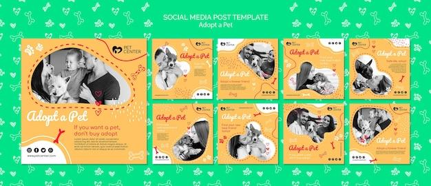 애완 동물 소셜 미디어 게시물을 채택하는 템플릿
