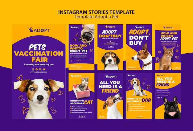 Template with adopt pet for instagram stories