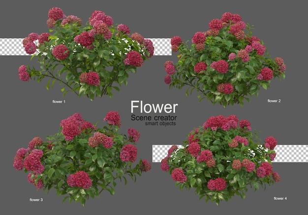 다양한 종류의 꽃 색깔