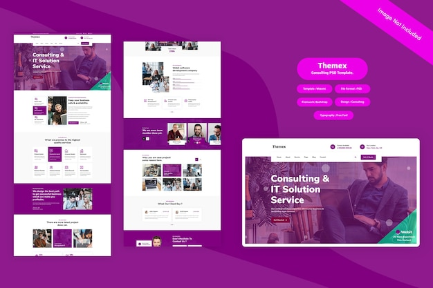 Themex - consulting web template