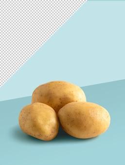 파란색 배경에 세 감자 이랑