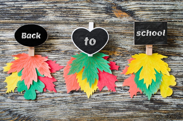 Three types of chalk notebooks with colored paper autumn leaves. autumn, fall concept.