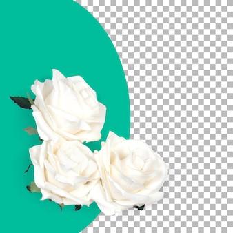 トップアップビュー孤立した白いバラと葉