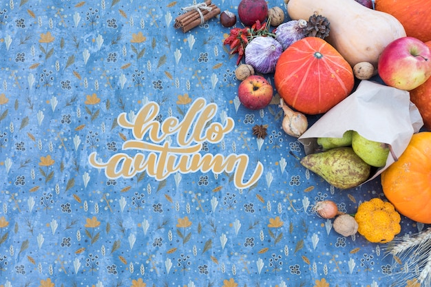 Top view of autumn harvest with blue background