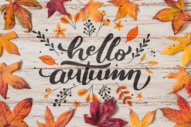 Top view autumnal arrangement on wooden background