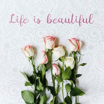 トップビュー花コンセプトの美しいセット