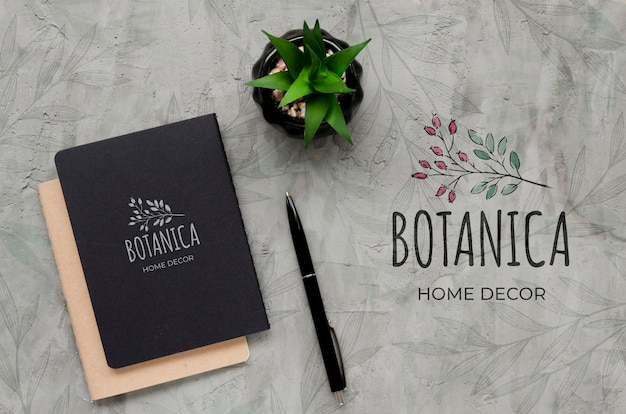 Top view botanic home decor concept