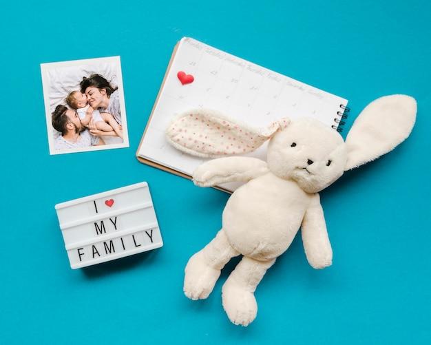 Vista dall'alto del coniglietto con quaderno e foto