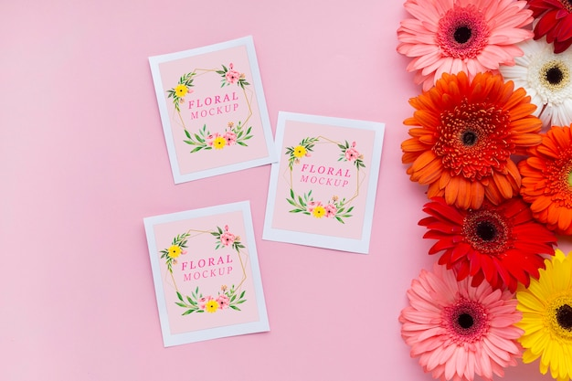Top view of cards mock-up with daisies